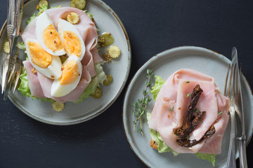 Two different scandinavian-style open sandwiches on plates: one with boiled egg and pickles and other with sun-dried tomatoes and herbs