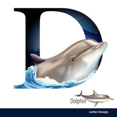 Vector illustration of Letter D for Dolphin alphabet. English