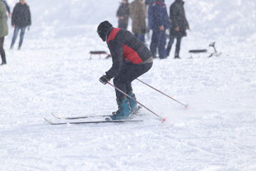 people skiing in the snow