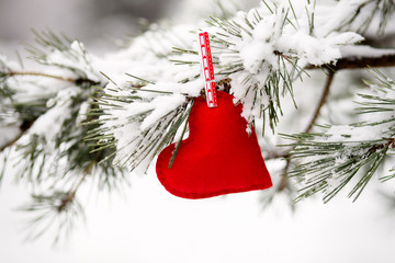 heart hanging on a snow-covered pine tree