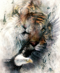 beautiful painting of eagle and tiger on an color abstract background with ornamental pattern, with spot structures. computer collage, vintage effect. Brown, orange, black and white color.