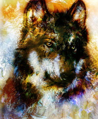 Wolf painting, color  background on paper , multicolor illustration. Brown, orange, black and white color.