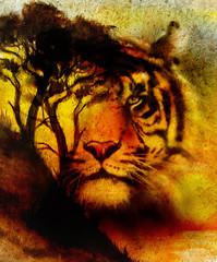 Painting sunset, sea and tree, and tiger portrait,  wallpaper landscape, color collage. and abstract grunge background with spots.