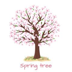 Wall Mural - Spring blossom cherry tree vector
