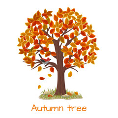 Wall Mural - Autumn tree vector
