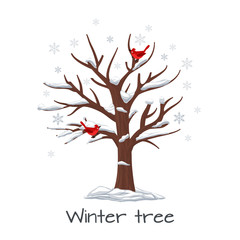 Wall Mural - Winter tree with birds vector