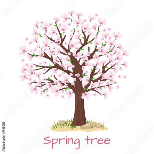 Wall mural Spring blossom cherry tree vector