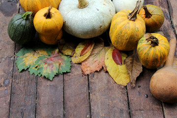 Pumpkin and leaves - Halloween, Thanksgiving and autumn background