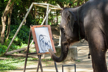 An elephant paint a watercolor.