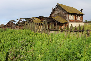 Wall Mural - Very old wooden house in the remote Russian village in summer