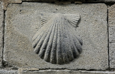 Pilgrim's shell (Venera) symbol of St James and Camino de Santiago