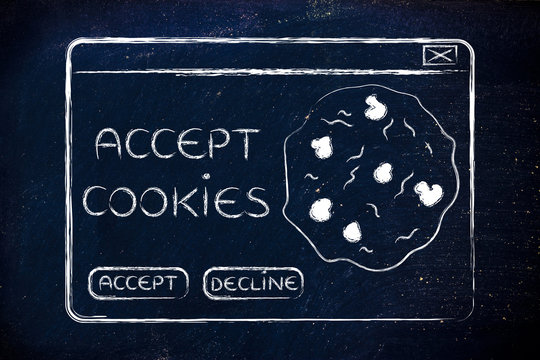 flat illustraion of a funny pop-up about browser cookies