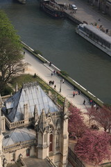 The view from Notre-Dame de Paris, 2010