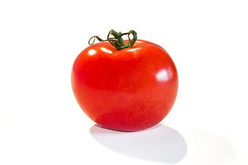 Einzelne Tomate auf weißem Hintergrund