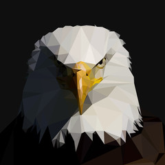 Bald Eagle in the style of triangulation. Vector illustration