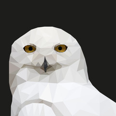 White Owl in the style of triangulation on a black background. Vector illustration