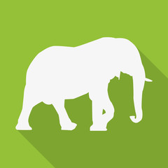 Icon elephant in white on a green background in a flat design