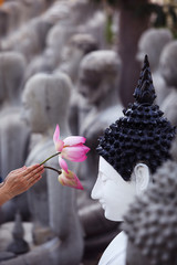 hand praying buddha image with lotus flower