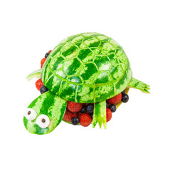 Turtle carved from a watermelon
