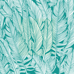 Feather background, hand drawn in vector.