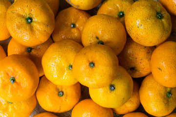 closeup of oranges in a market