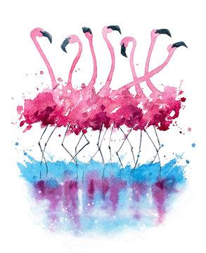 Flamingos watercolor painting