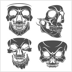 Set of skulls. Vector illustration.