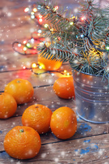 New Year's still life with tangerines.