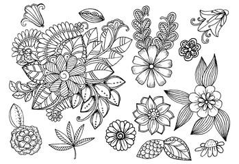 Set of doodle floral elements for design or coloring