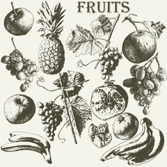 Fruit set.