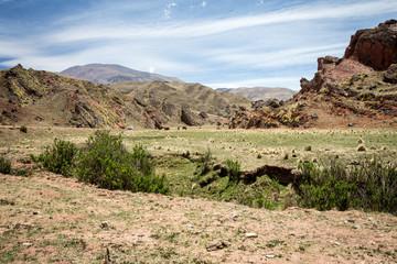 valley northwestern argentina