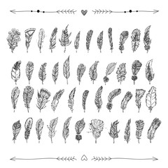 Decorative hand drawn doodle feathers with hearts and arrows