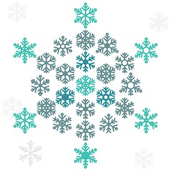 Snowflake winter set (vector ). Graphic crystal frozen decoration for design. Isolated.