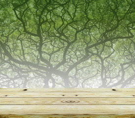Wooden floor perspective and green forest