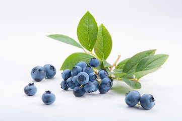 Group of blueberries with leaves on a branch
