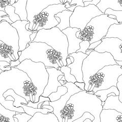 hand drawn hibiscus flowers seamless pattern