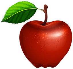 Red apple with leaf and stem