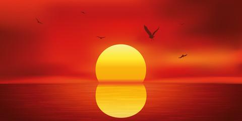 Paysage Coucher de Soleil-Mouettes