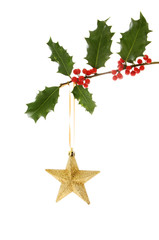 Gold star in holly
