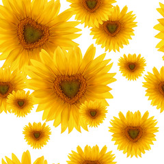seamless pattern flower sunflower