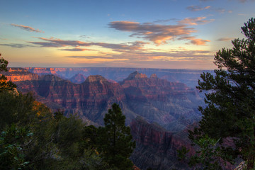The grand canyon from North Rim