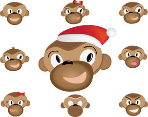 Monkey in Santa and emotions