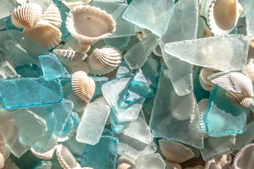 Turquoise sea glass and cockle shells; glass worn smooth by ocean waves
