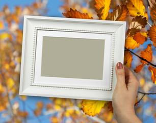 Wooden frame in woman hands on the background of yellow fall oak leafs