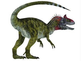 Cryolophosaurus Dinosaur Tail - Cryolophosaurus was a theropod dinosaur that lived in Antarctica during the Jurassic Period.