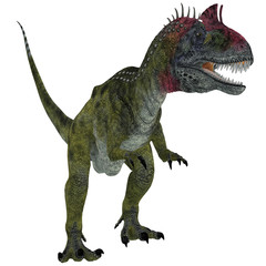 Cryolophosaurus on White - Cryolophosaurus was a theropod dinosaur that lived in Antarctica during the Jurassic Period.