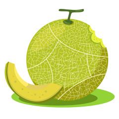 Illustrator of melon green