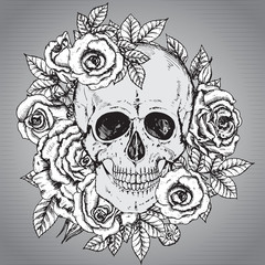 Vector illustration with hand drawn human skull with rose flower