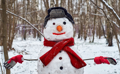 Funny snowman in the park