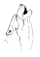 head howling wolf vector illustration